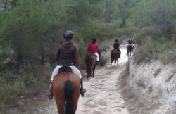 La Llar del Cavall en Alicante (Alicante)