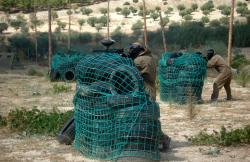 Paintball Camp en Campo Real (Madrid)