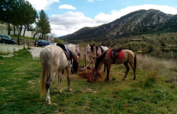 Rutas a caballo La Tinença en La Pobla De Benifassa (Castellón)