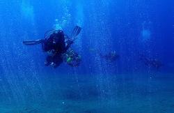 Safari Diving en Puerto Del Carmen (Lanzarote)