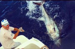 Sport Delta Fishing en Cambrils (Tarragona)