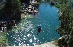 Tulypan en Villalba De La Sierra (Cuenca)