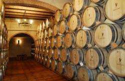 Vinos Palarea en Chinchilla De Monte Aragon (Albacete)