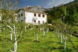 Casa Mendiaxpe casa rural en Asparrena (Álava)