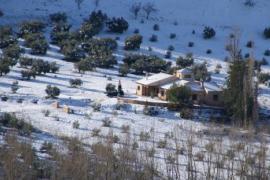 Casas Rurales Cortijo Bellavista casa rural en Alcaraz (Albacete)