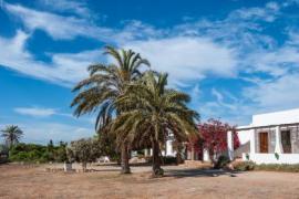 Cortijo La Molina de Cabo de Gata casa rural en Nijar (Almería)