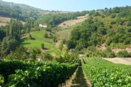 Apartamentos Rurales Ardaliz casa rural en Cangas De Onis (Asturias)