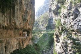 Apartamentos Rurales Les Cuartes casa rural en Cangas De Onis (Asturias)