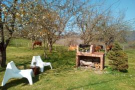 ¡Vacaciones de verano en Asturias!