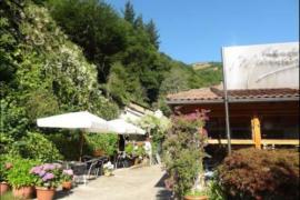 Marroncin casa rural en Cangas Del Narcea (Asturias)