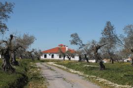 Casa Rural La Garrota casa rural en Segura De Leon (Badajoz)