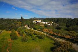 Els Cucons casa rural en Sant Pere De Ribes (Barcelona)