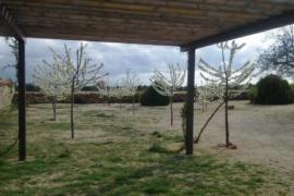 Casas Rurales Cinco Celemines casa rural en Ciruelos De Cervera (Burgos)