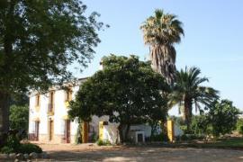 Finca El Cortijillo casa rural en San Pablo De Buceite (Cádiz)