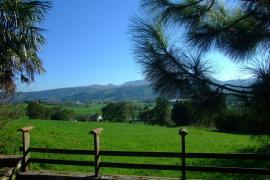 Casa Rural Bajo El Arce casa rural en Penagos (Cantabria)