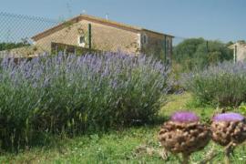 Mas la Ginesta casa rural en Borrassa (Girona)