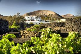 Finca De La Florida casa rural en San Bartolome (Lanzarote)