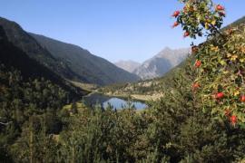 Este verano relajate en la Vall de Boí