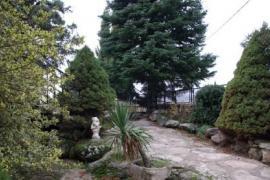 Chalet sierra Madrid jardín chimenea barbacoa