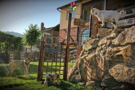 Finde Casa Rural x 38€ + Regalo ruta a caballo