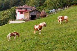 Bagoleko Borda I y II casa rural en Etxalar (Navarra)