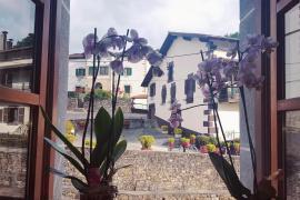 Posada De Oitz casa rural en Oitz (Navarra)