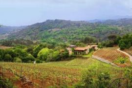 Pazo Viña Mein casa rural en San Clodio (Ourense)