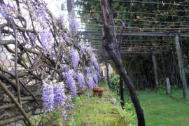 Balneario Davila casa rural en Caldas De Reis (Pontevedra)
