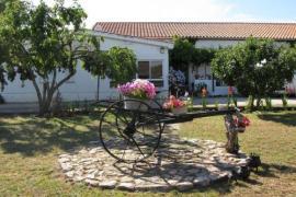 El Condado casa rural en Fuentes De Oñoro (Salamanca)