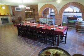 El Sueño de Luisa casa rural en Coca (Segovia)