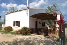 Caseta De Susana casa rural en Deltebre (Tarragona)