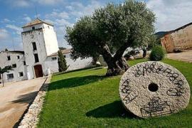 Mas D'alerany casa rural en Tivissa (Tarragona)