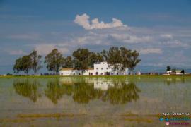 Mas Illa De Riu casa rural en Sant Jaume D´ Enveja (Tarragona)