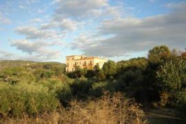 Rincon de la fuente casa rural en Buenaventura (Toledo)