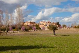 Hotel La Casona De Andrea casa rural en Tiedra (Valladolid)