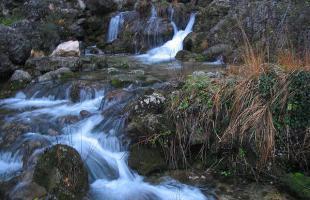 Nacimiento del Río Mundo: un recorrido por su cauce
