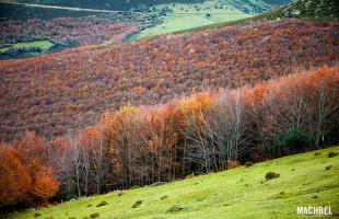 Parques Naturales en Cantabria