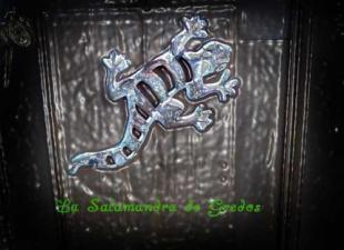La Salamandra De Gredos