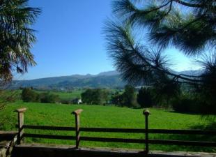 Casa Rural Bajo El Arce