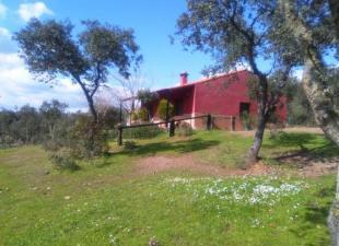 Casas de Campo Puente Nuevo