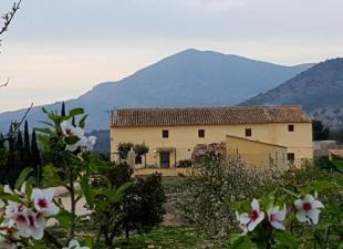Casa Marsilla