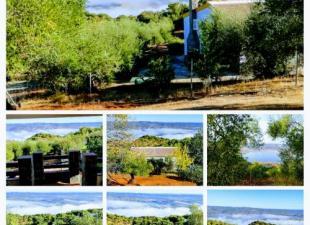 Hacienda Los Ganaderos