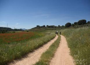 Asociacion turistico - cultural La Alcarria El Viaje