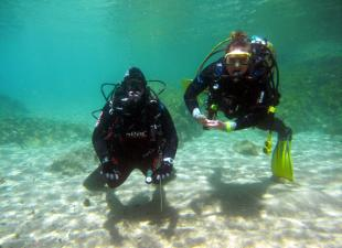 Club de Buceo Facilsub