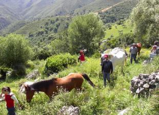 Rutas a caballo Santiago