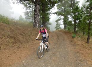 Bike n´ Fun