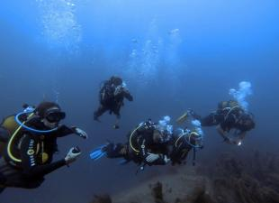 Blue-Adventure Diving Center