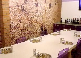 Bodegas y viñedos del Jalón