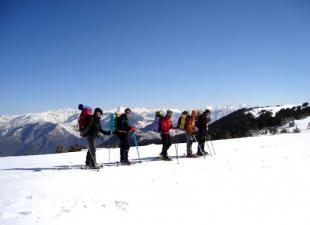 Free Flocks Muntanya i Esqui