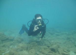 Mar y Mas Dive Centre